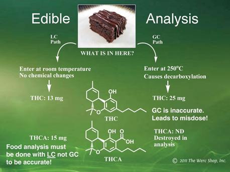 edible-analysis